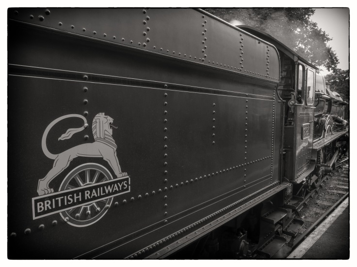 Train (8 of 9)